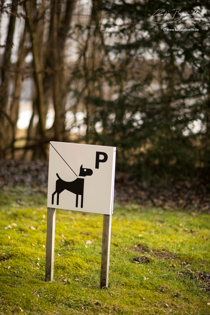 Doggy-Parking